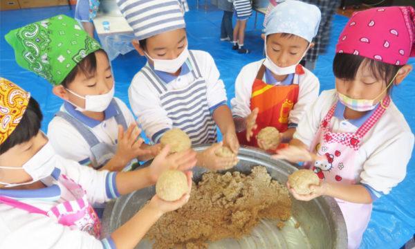 こだわりの自園給食、お米やみそ作り等の栽培・クッキング体験